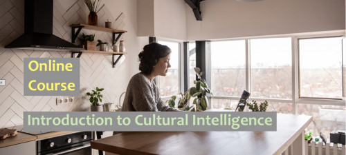 Introduction to Cultural Intelligence - An Online Course